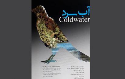 با فیلمهای کوتاه جشنواره۳۳| «آب سرد»؛ درباره رابطه کودک و محیطزیست